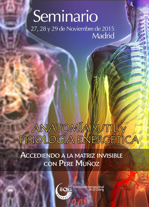 Seminario en Madrid. Anatomía sutil y fisiología energética ...