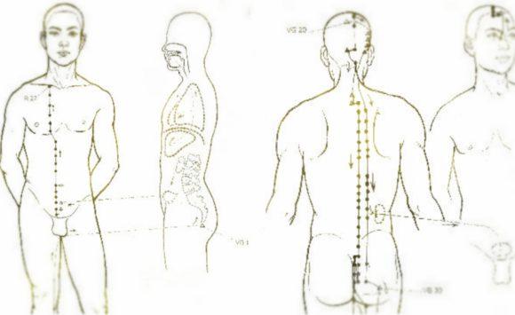 Ejercicios para tonificar vejiga y riñones
