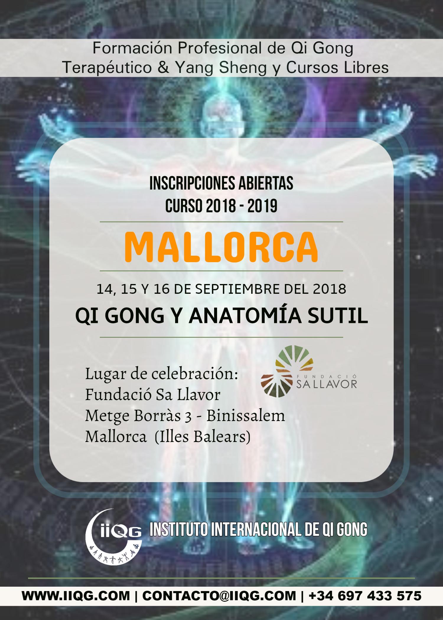 Anatomía_Mall