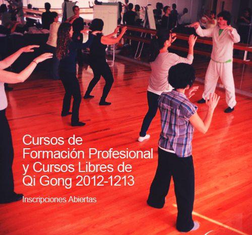 Formación Profesional y Cursos Libres de Qi Gong 2012-1213