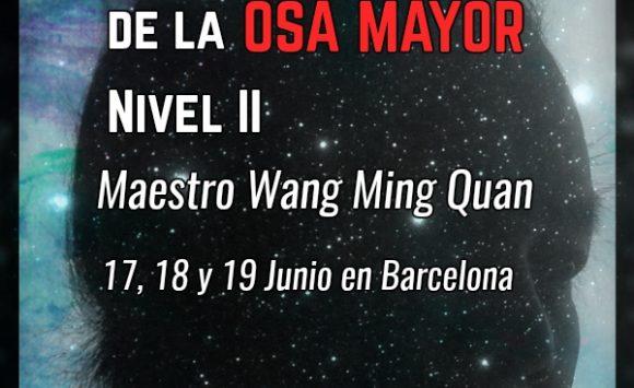 Qi Gong misterioso de la Osa Mayor. Nivel II. 17, 18 y 19 de Junio de 2016