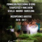 Formación Profesional de Qi Gong Terapéutico & Yang Sheng y Cursos Libres