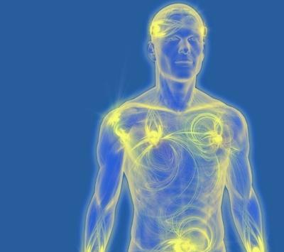 Seminario Patologías del Qi y Diagnóstico Energético en Madrid