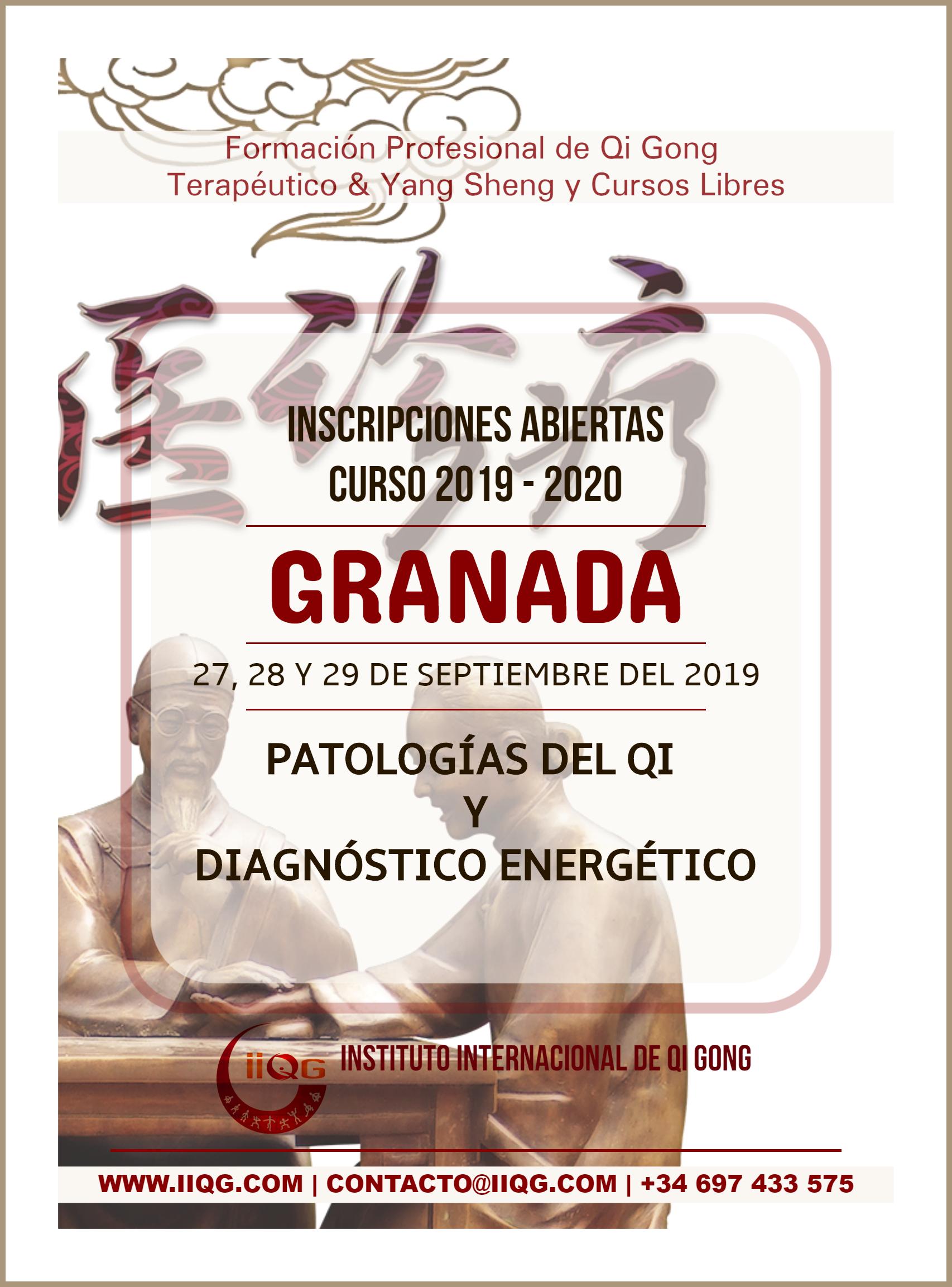 Diagnostico_GRANADA