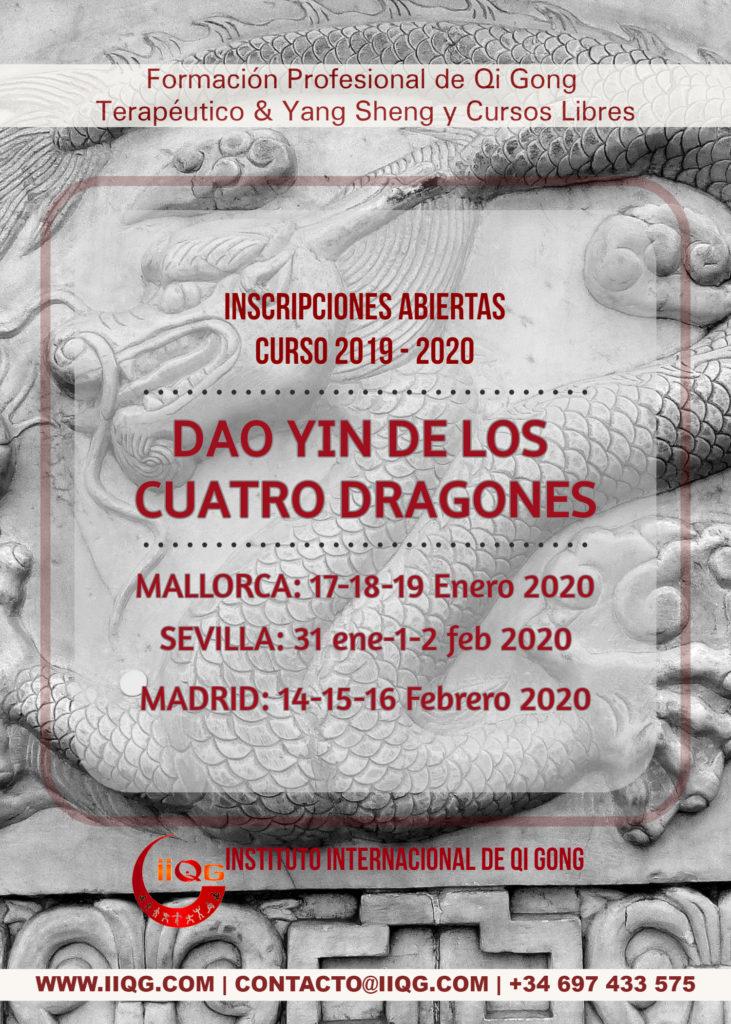 dao yin cuatro dragones