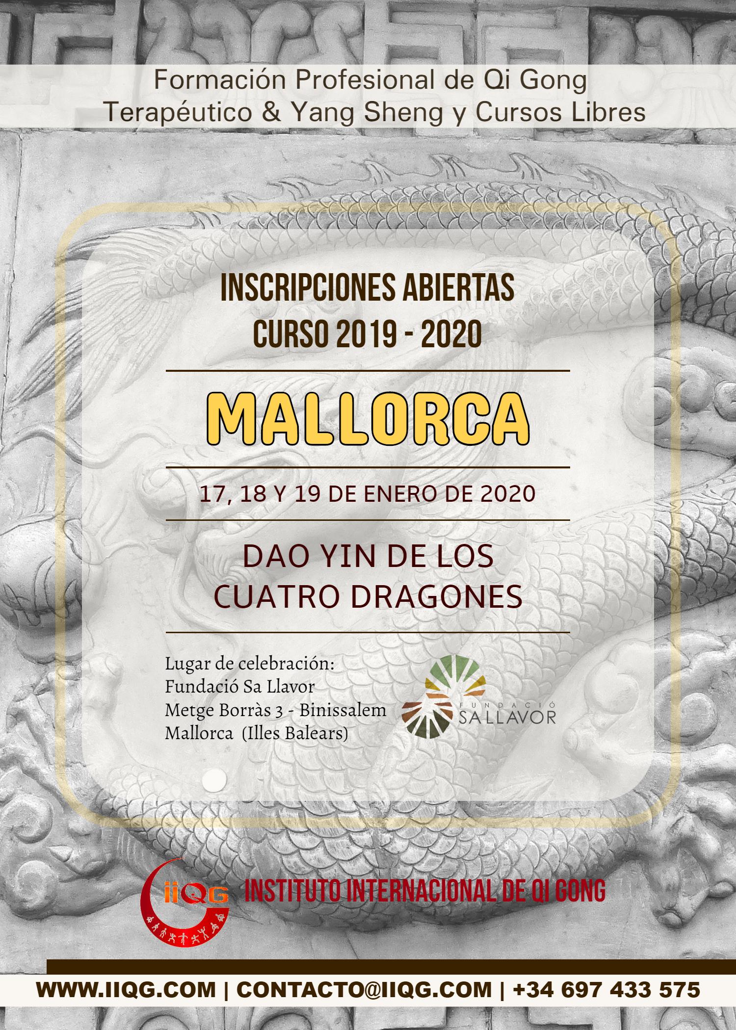 DRAGONES_MALL