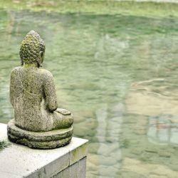 Seminario Iniciación al Feng Shui: Viento y Agua en Madrid