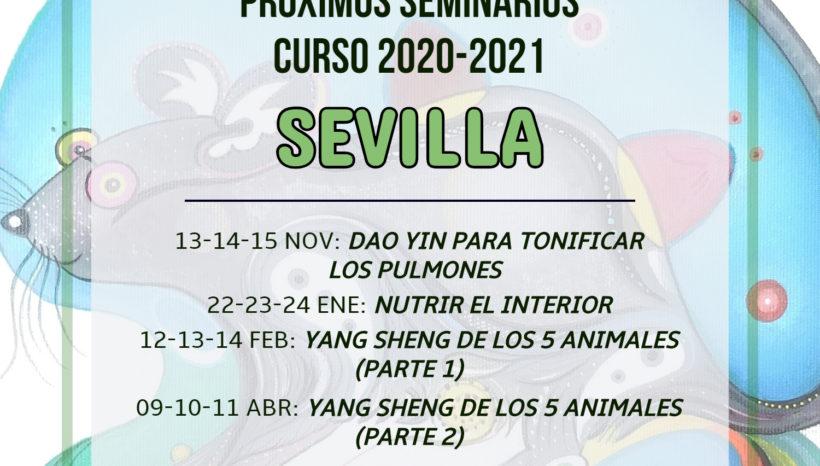 Programación 2020-2021 en Sevilla