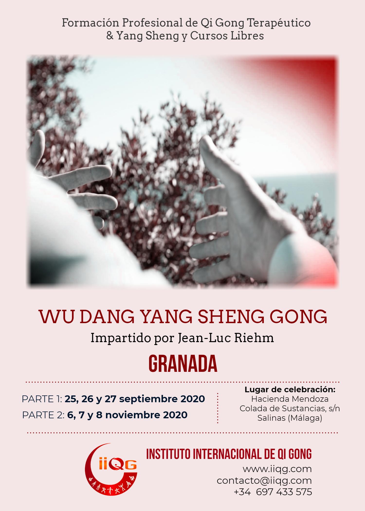 WD_GRA_20