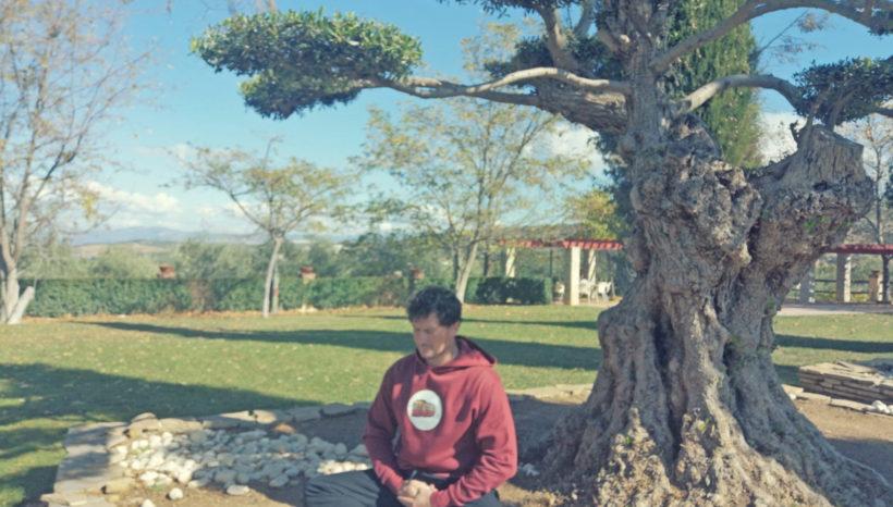 Seminario Wu Dang Yang Sheng Gong
